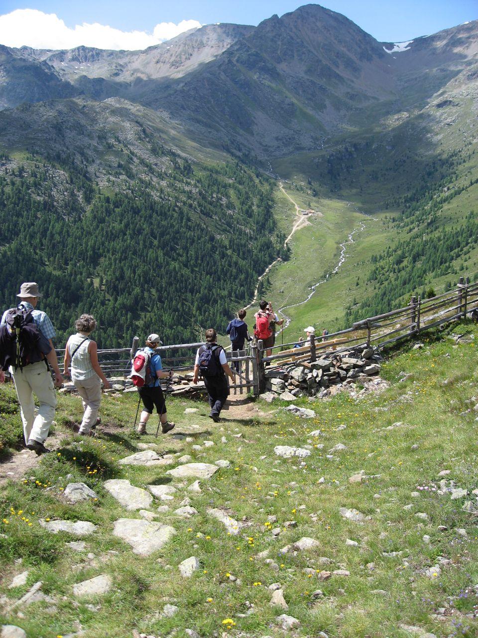 Blick ins Flatschbergtal